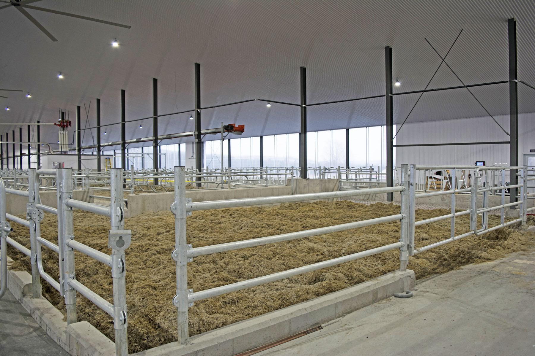 enclos avec main vache laitière / Équipements PFB