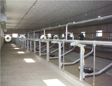 stalles animaux installation pour ferme production animal