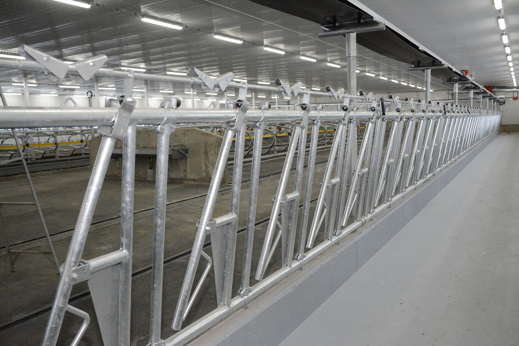 mangeoire carcan stabulation installation agricole / Équipements PFB