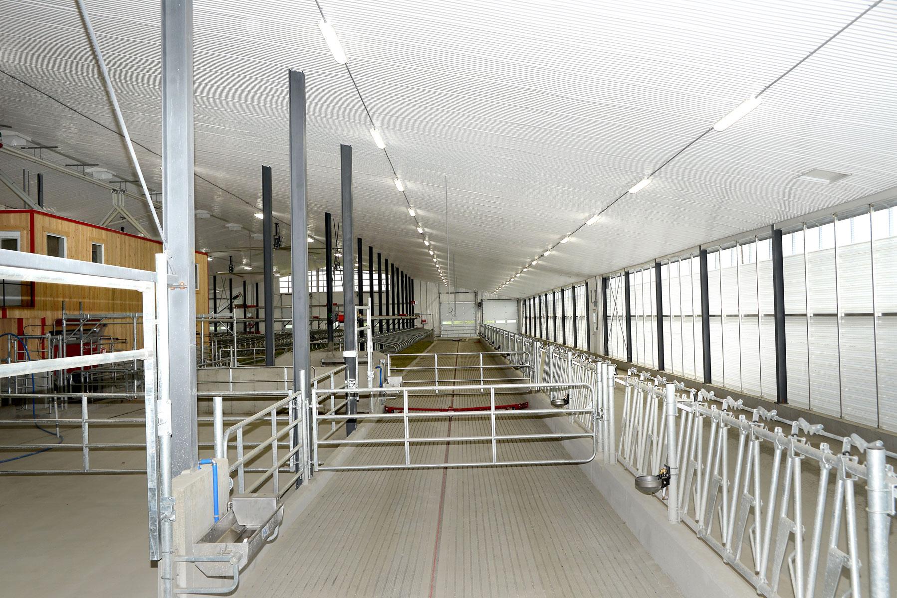 installation laitière barrière abreuvoire mangeoire carcan enclos robot / Équipements PFB