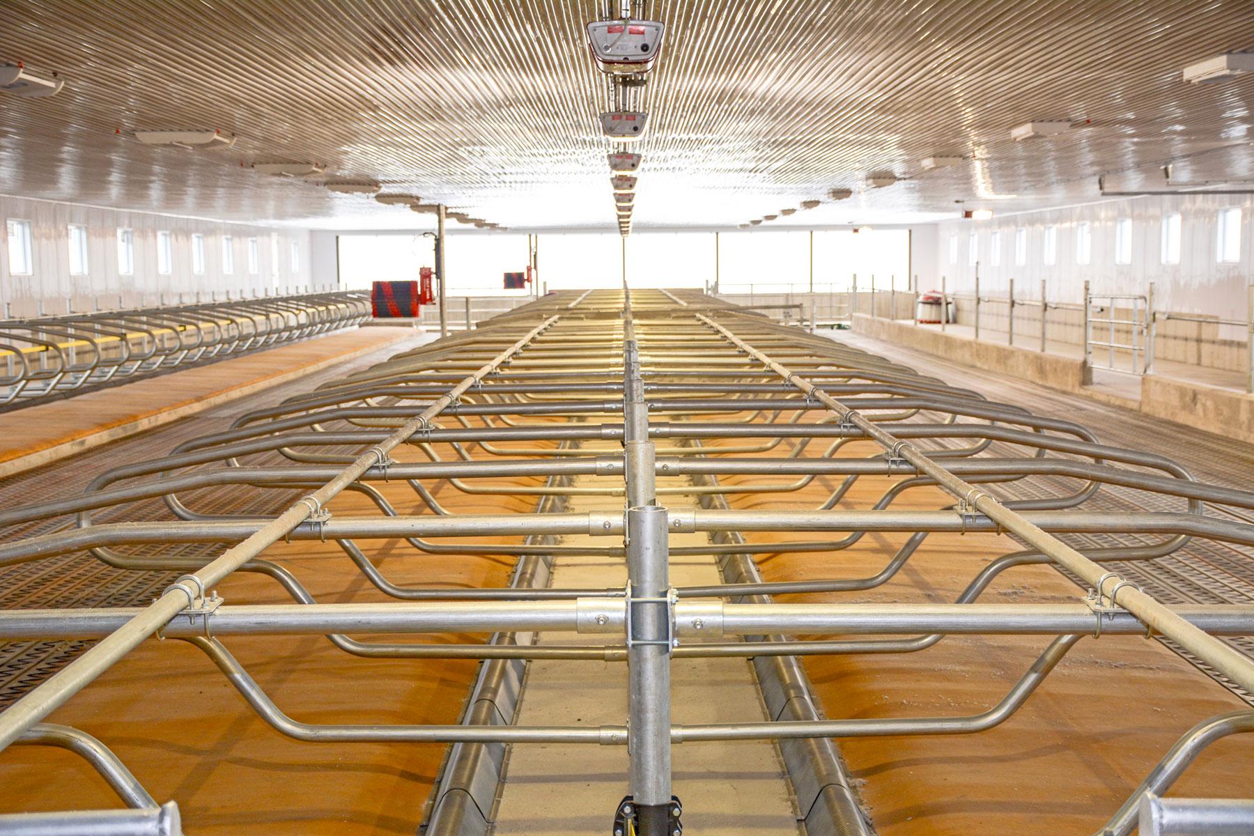 logette étable vache laitière / Équipements PFB