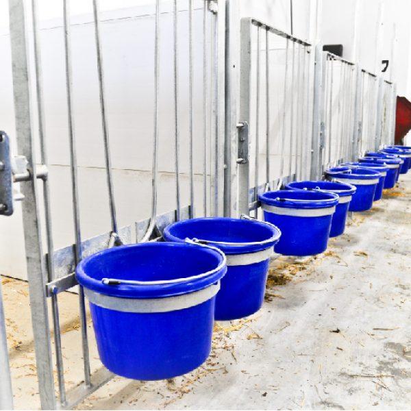 cage à veau vache laitière installation agricole / Équipements PFB